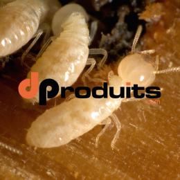 Anti-Termite Spécial Bois Prêt à l'Emploi