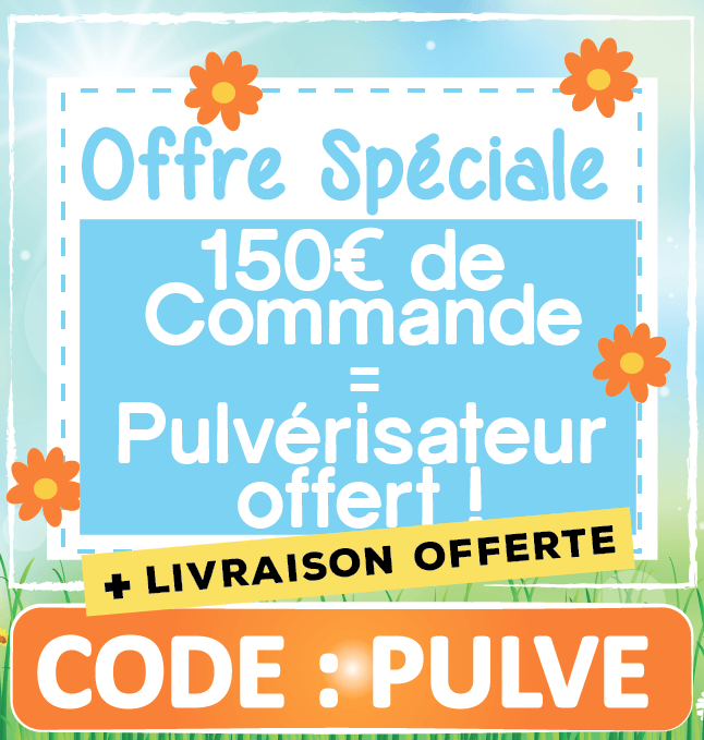 REDUCTION SOLDES