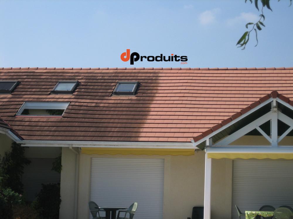 traitement champignons facade maison avie home. Black Bedroom Furniture Sets. Home Design Ideas